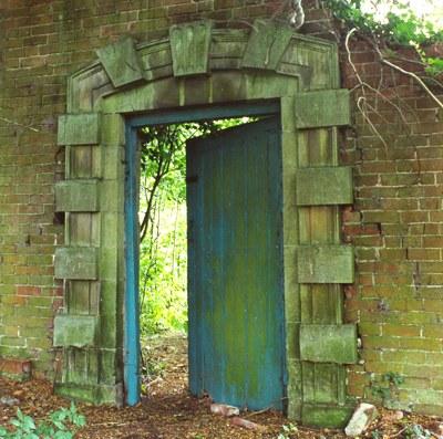 blue door to nature