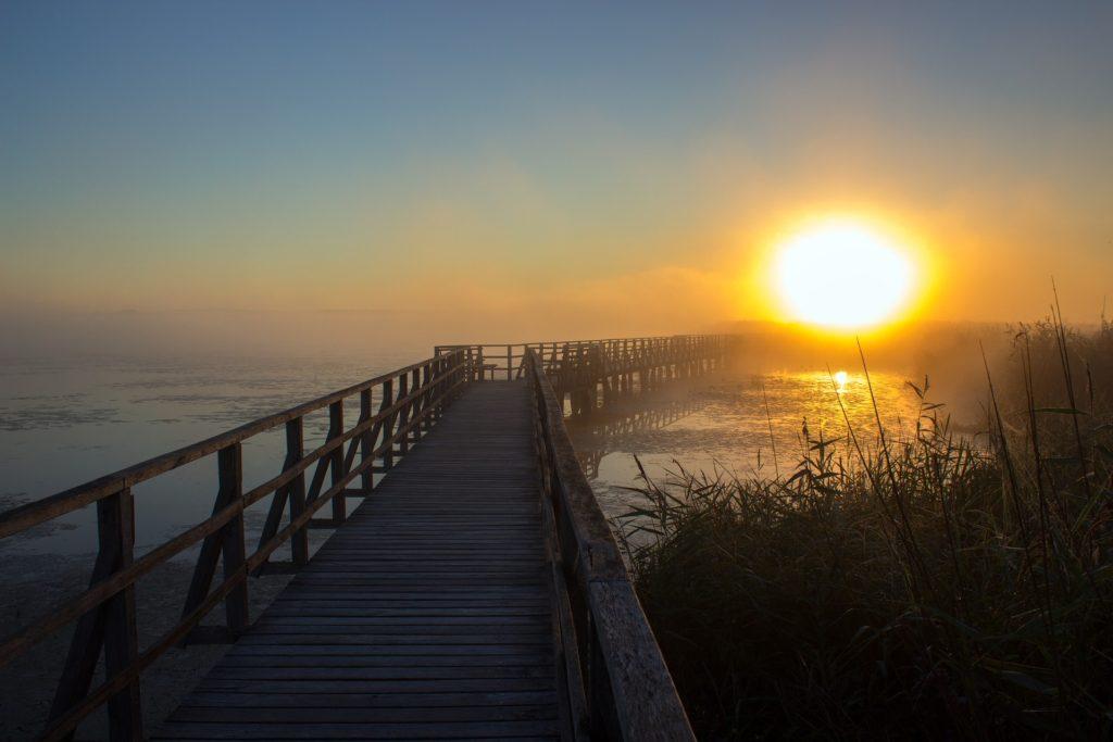 boardwalk ocean sunrise